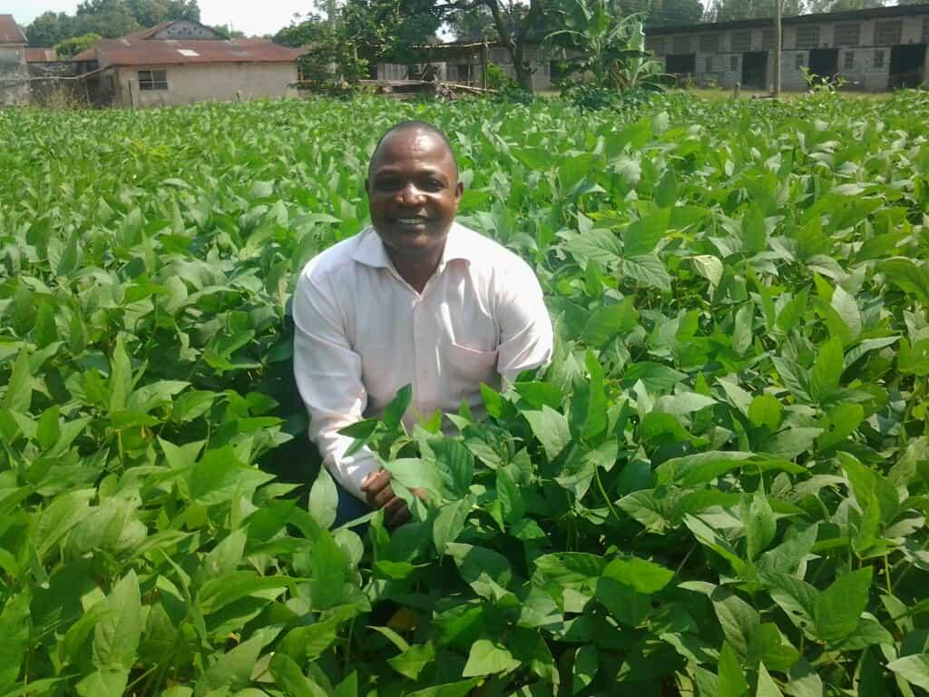 La culture de soja dans le jardin de la procure idiofa : une réussite !